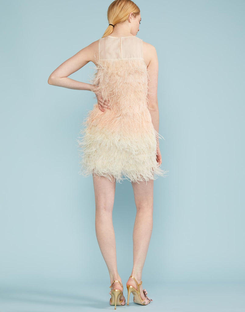 Kitty Ombre Feather Party Dress