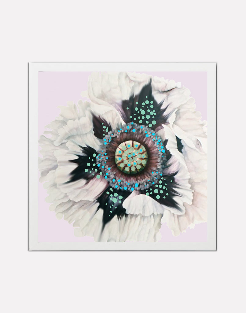 Framed white flower original print.