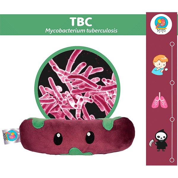 TBC (MYCOBACTERIUM TUBERCULOSIS) by Myps