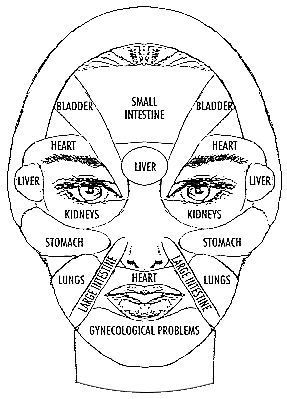 Facial Mapping Diagram