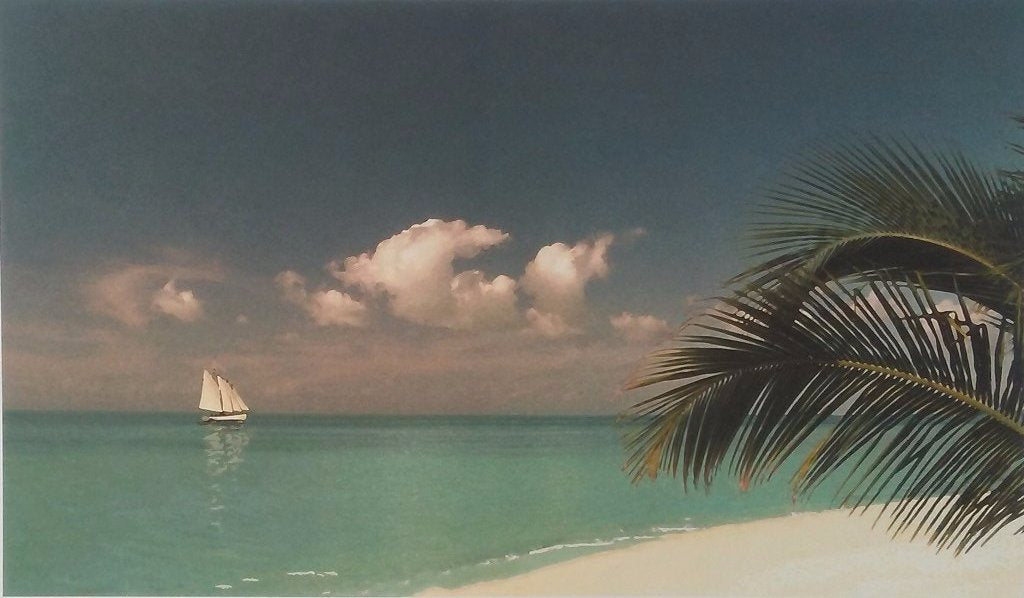 Beach Islands Sailboats with Palm tree in the Caribbean Islands