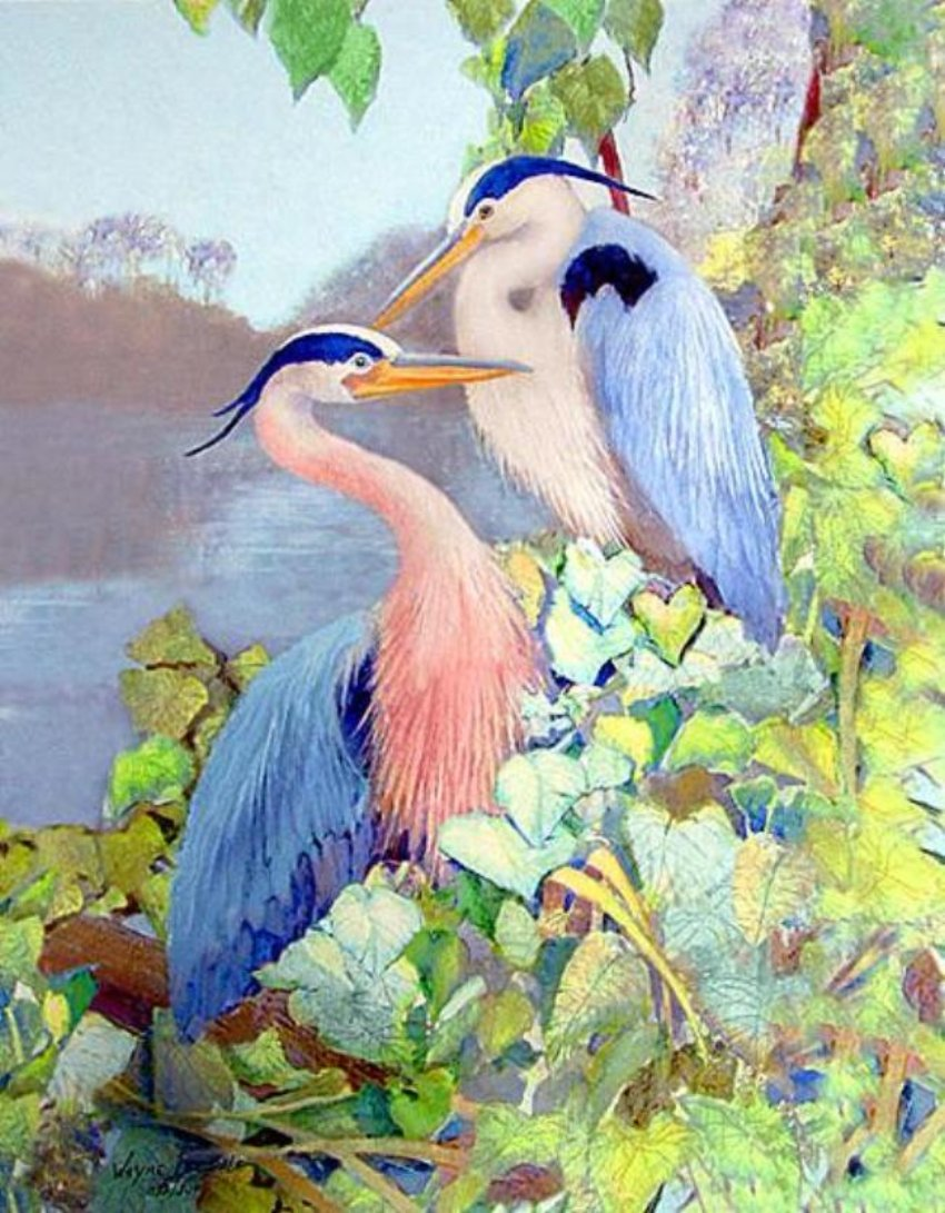Herons Tropical Birds in Foliage limited edition