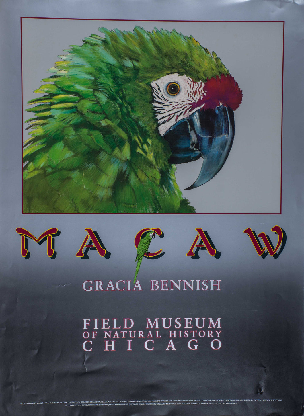 Bennish, Garcia ''Macaw Field Museum of natural history Chicago''