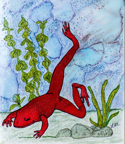 A large red frog swims underwater enjoying the pond he is in.