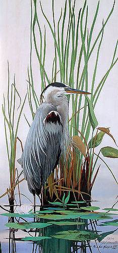 Adamson-Neil-Great-Blue-Heron