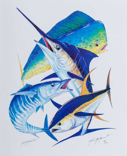 bull dolphin tuna sword fish fish sea