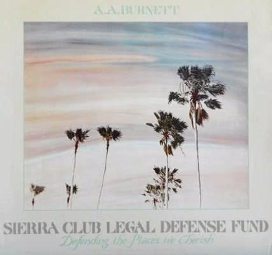 Burnett-A.A.-Palm Trees in the sky -Sierra Club Poster-Hand Painter Photograph
