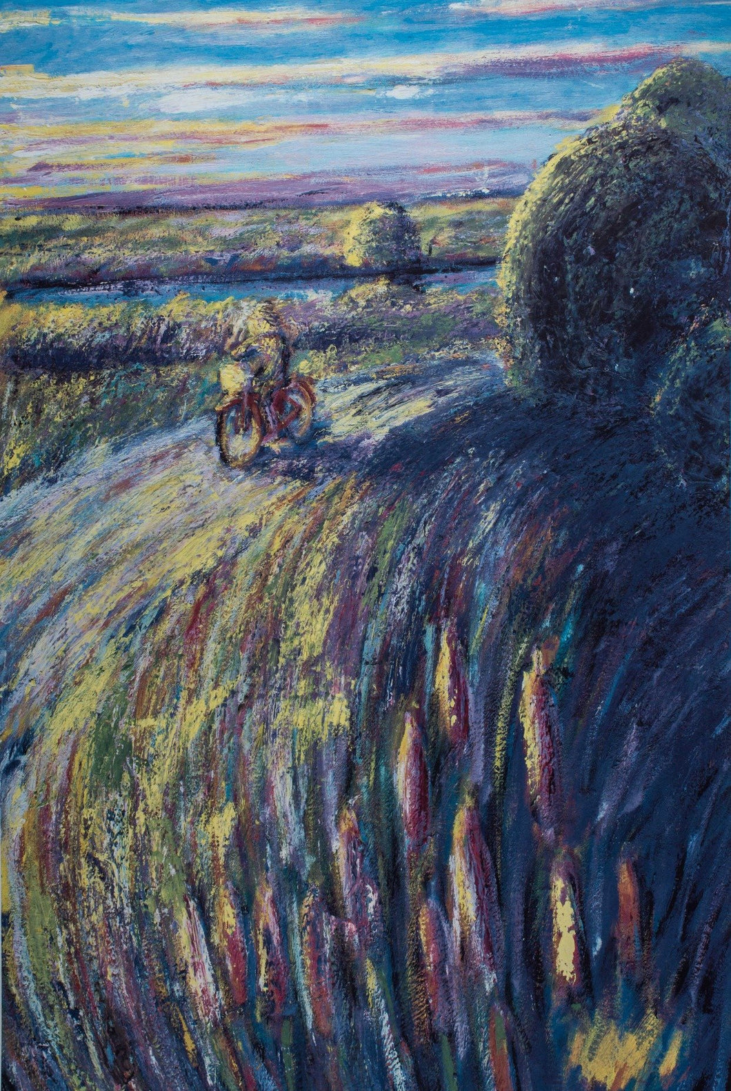 Girl on Bicycle on a country field  and road