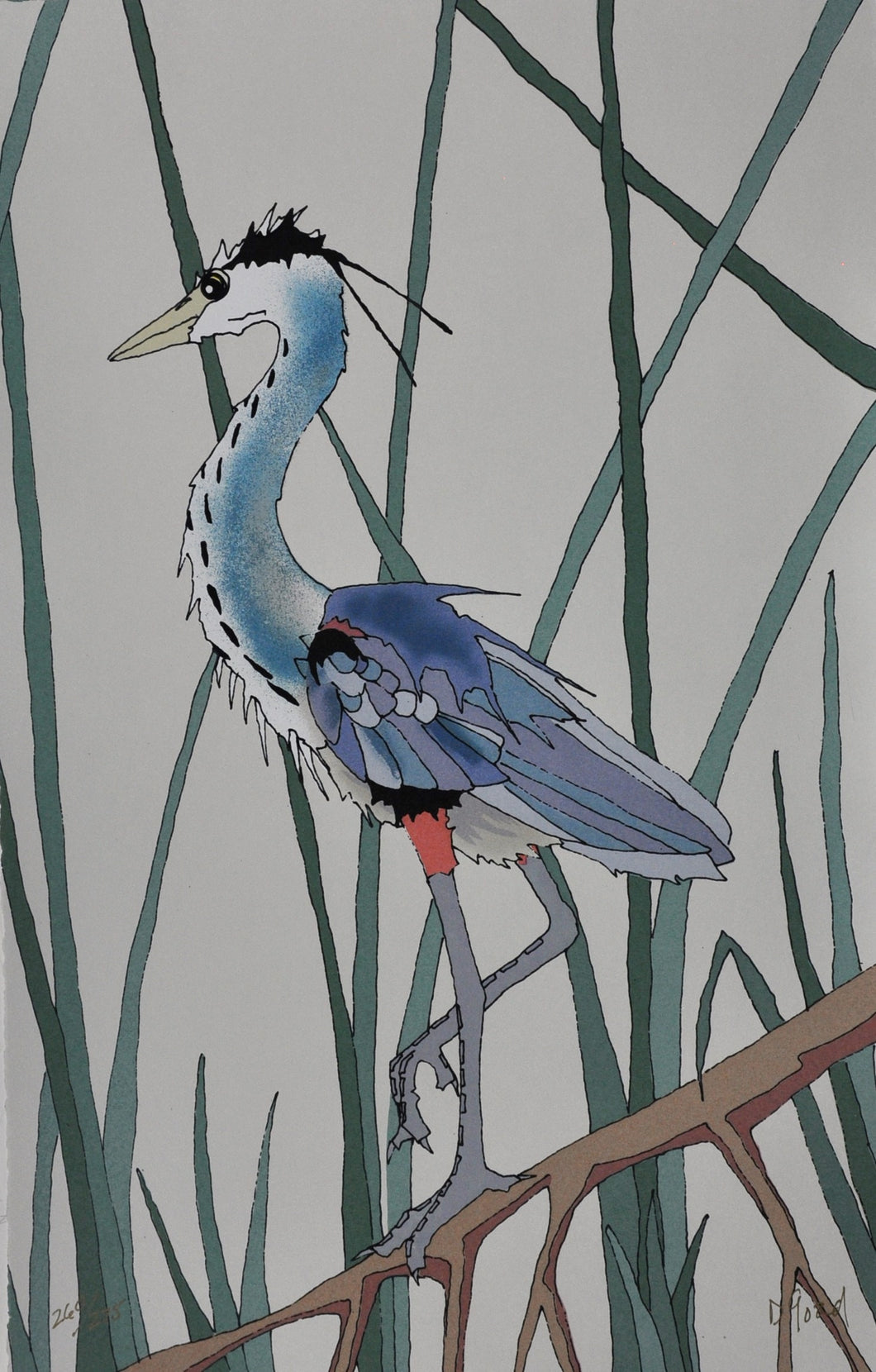 blue heron bird