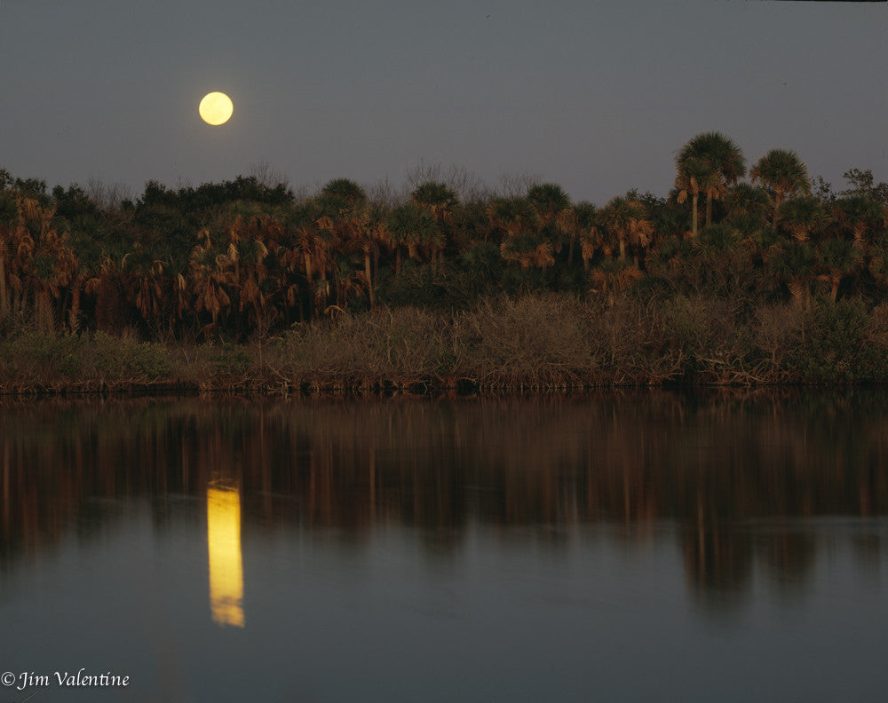 titusville ocean water reflection moonlight dusk summer florida state parks orlando photography James valentine nature conservationist