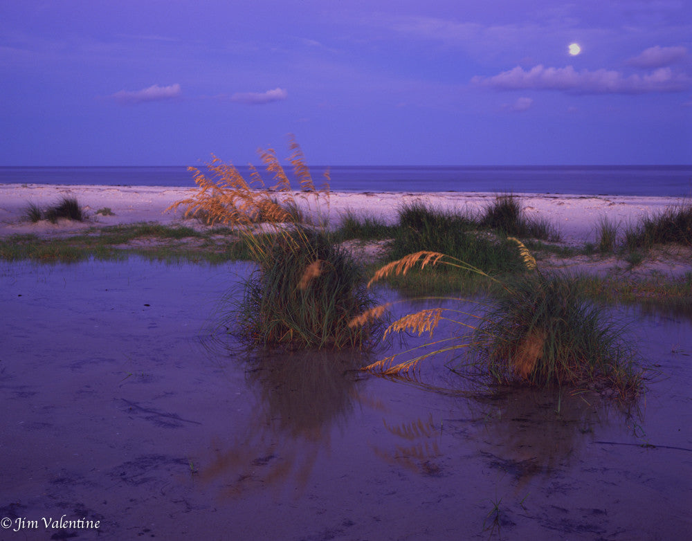 beach ocean moonlight dusk dawn purple sand waves james valentine florida state parks