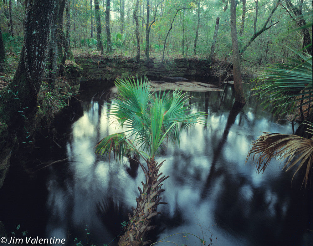 everglades swamp nature forrest forest lake pond river creek trees reflection james valentine photography