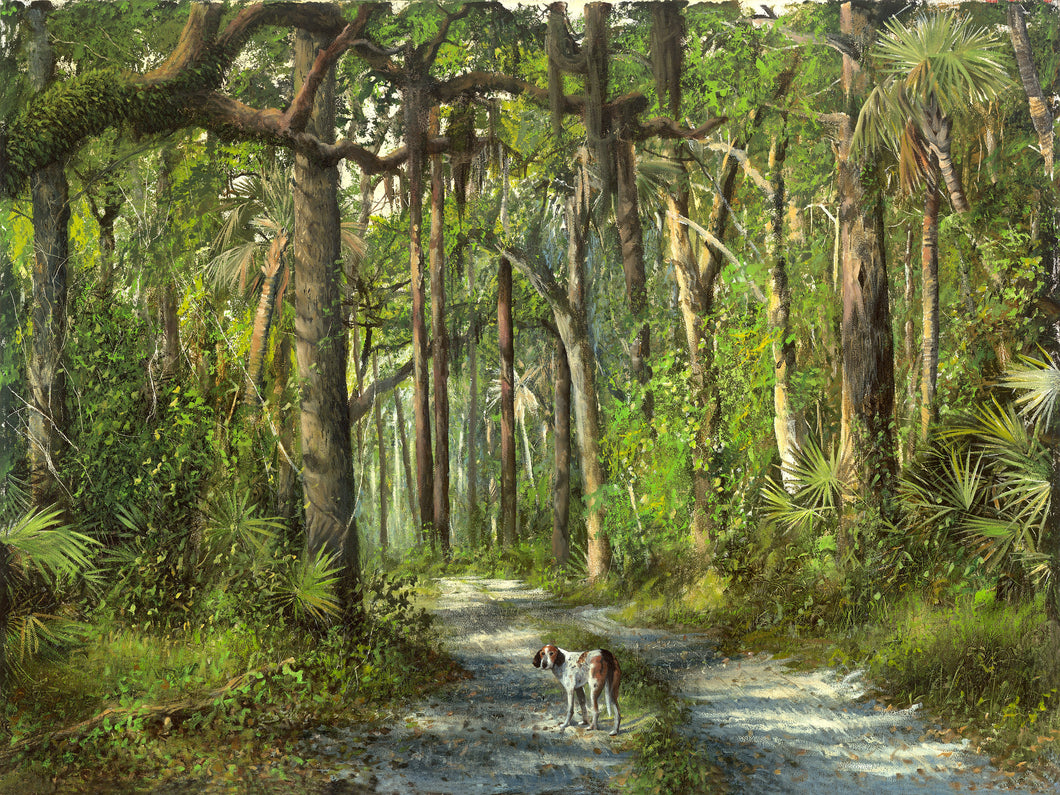 riley, seven north art, painting, print, dog, nature, woods, tree