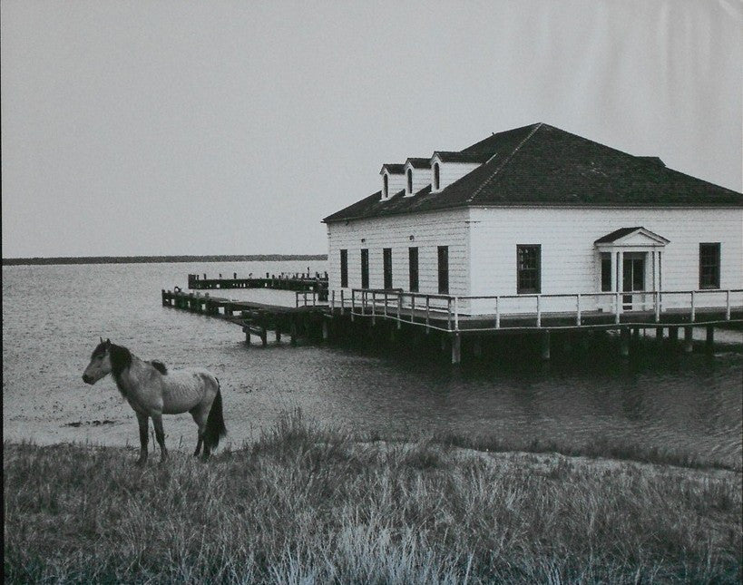 Lsparolini-John-Assateague-16x20-Ph-poster-list-20-ours-15-e1445704763296.jpg