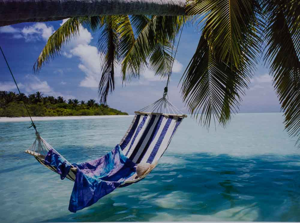 tropical beach with hammock turquoise blue ocean sea with palm trees