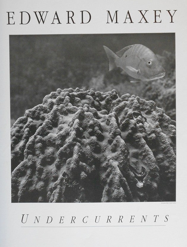 Maxey-Edward-Undercurrents-Governers-Reef-Grand-Cayman-1993-24x22-Ph-poster-list-35-ours-25-e1445704739732.jpg