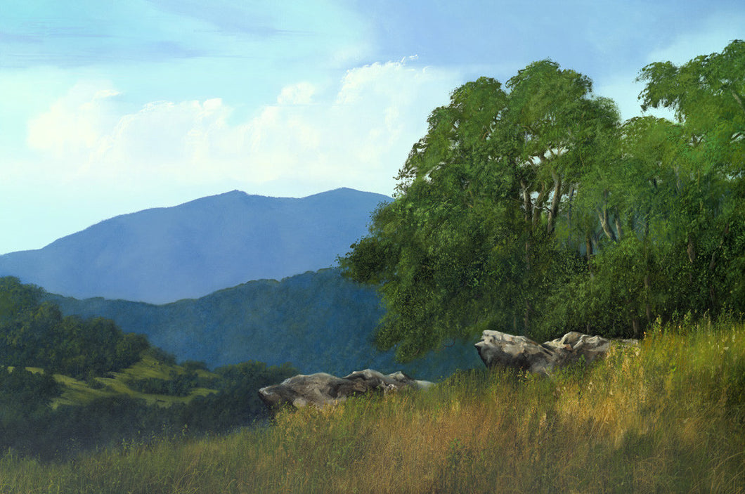 riley, seven north art, painting, print, mountains, nature, woods, trees