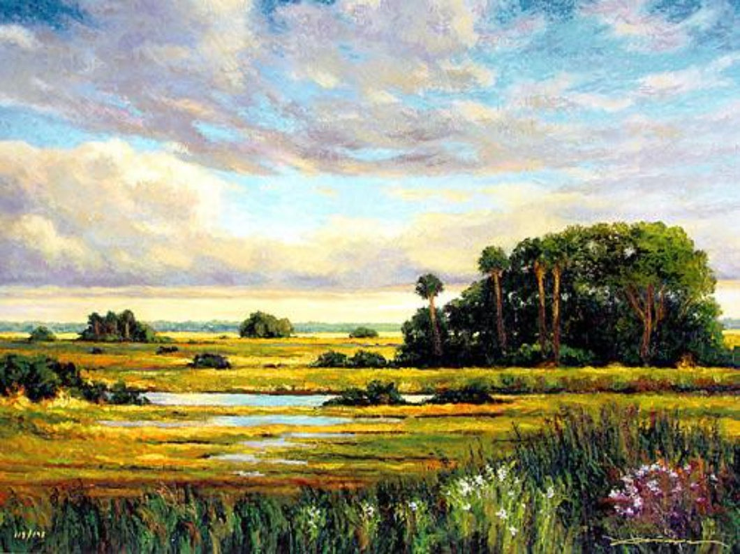 Pettegrew Landscape Art of an  everglades scene with flowering grasslands