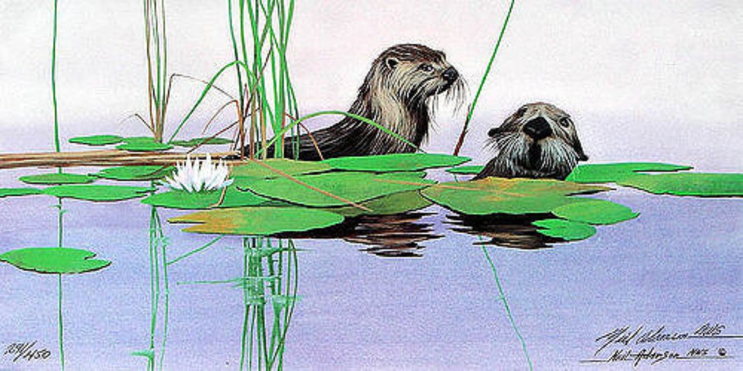 Adamson-Neil-River-Otters