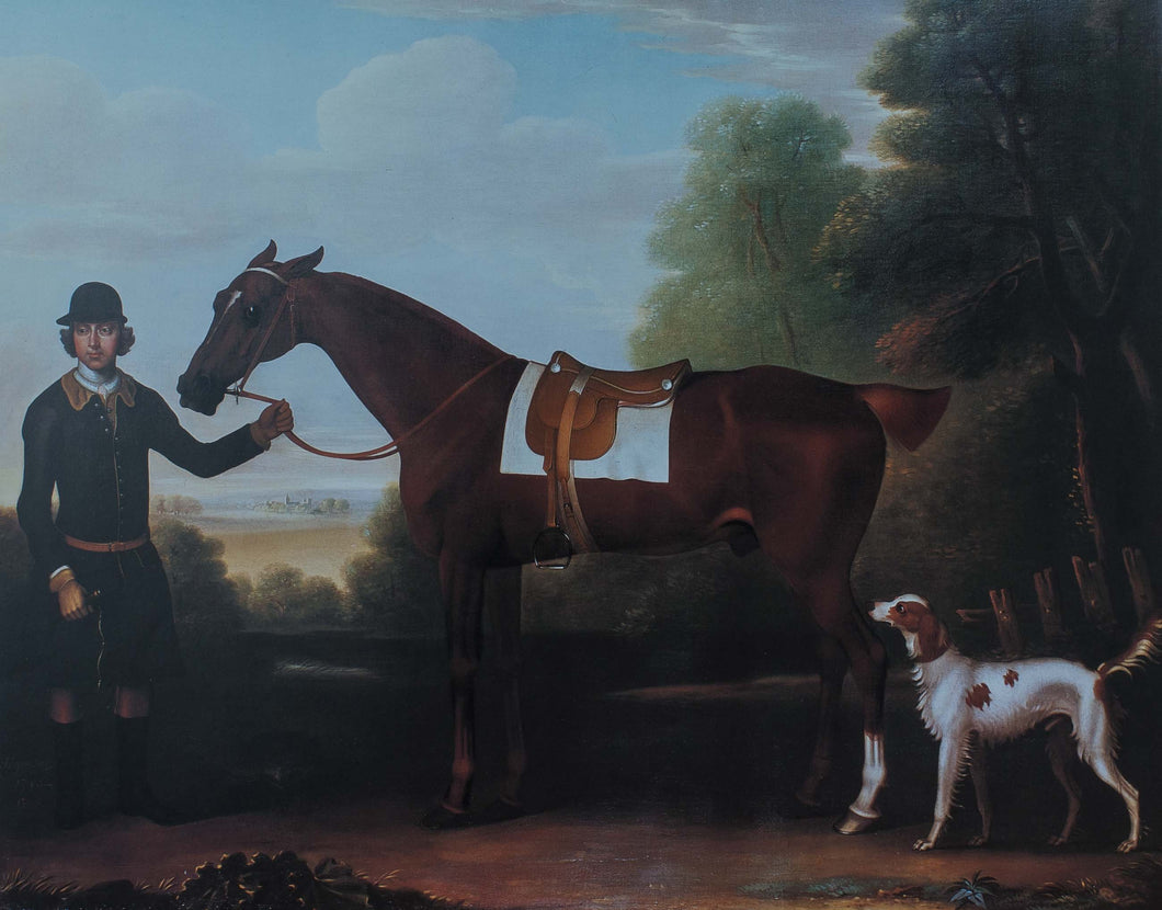 Portmans brown horse and white dog