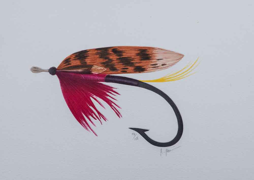stripped wing wet fly etching colorful fishing
