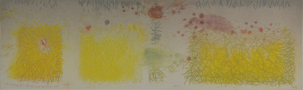 "Morrin ""To the Yellow"" 10x24 Original Limited Edition Etching"