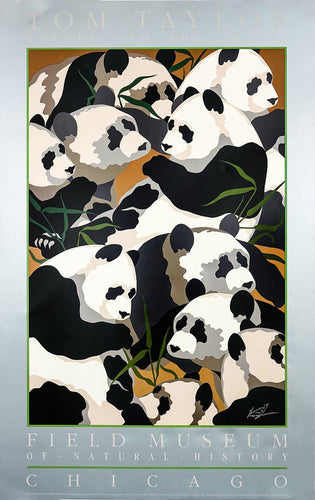 A Vintage Museum Panda Poster for the Chicago Museum of Natural History featuring several of the adorable black and white pandas eating Bamboo.