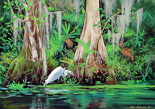 *Adamson, Neil Homosassa River 14 x 20