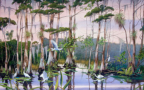 Adamson, Neil  ''Southern Cypress''   a print signed & numbered by the artist - 24 x 37