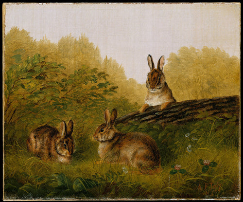 Two adorable rabbits sit grazing off the grass, while their friend, a third rabbit, sits on a log with his ears perked up hearing a sound in the distance.