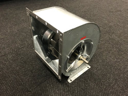 Extraction Fan RZR 11-250