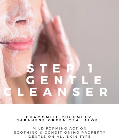 STEP 1 FACIAL CLEANSER