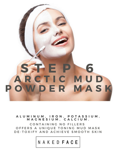 Step 6 Arctic Mineral Powder Mask