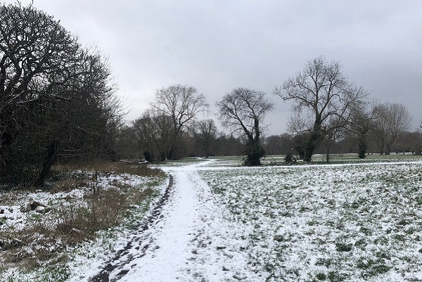 Snow-covered running route