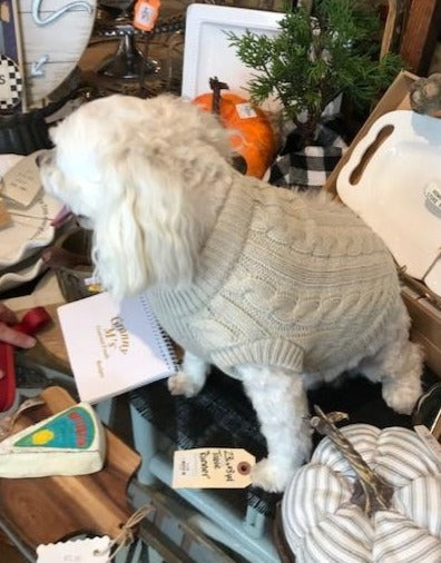 CC Solid Rib Pet Sweater