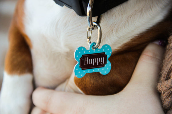 Pet Tags w/ Personalization-Double Sided (Florida Collection)