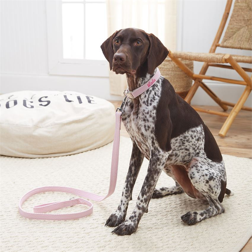 Mud Pie Dog Leash W/ Name or Monogram