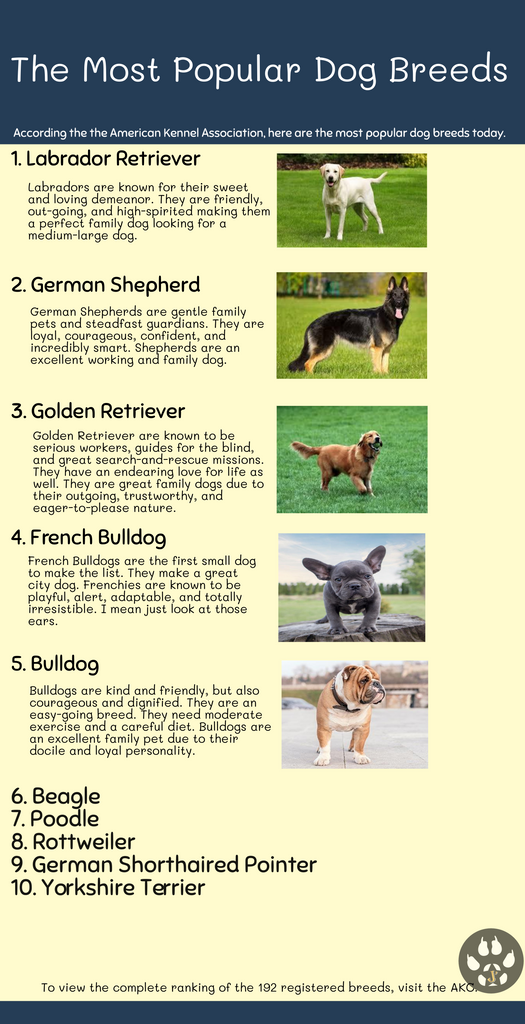 The Top 10 Dog Breeds of 2018