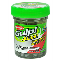 Minnows Jar