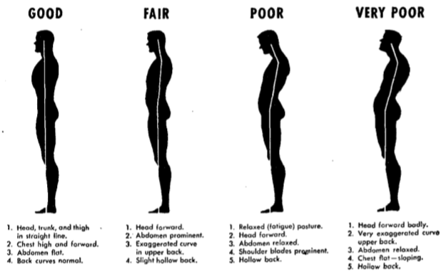 Good posture vs bad posture