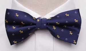 Classy Men Blue Fancy Bow Tie - Classy Men Collection