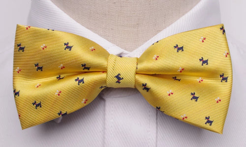 Classy Men Yellow Fancy Bow Tie