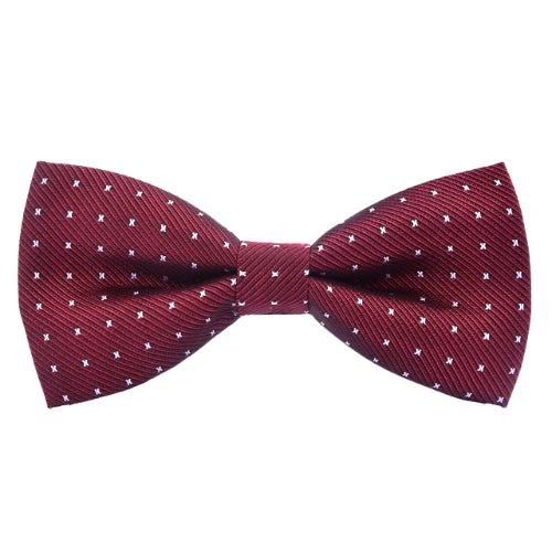 Classy Men Red Dotted Bow Tie