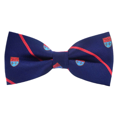 Classy Men Striped Fancy Bow Tie