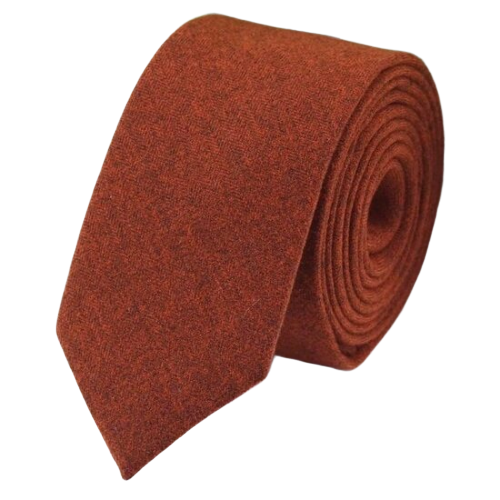 Classy Men Rust Orange Cotton Necktie