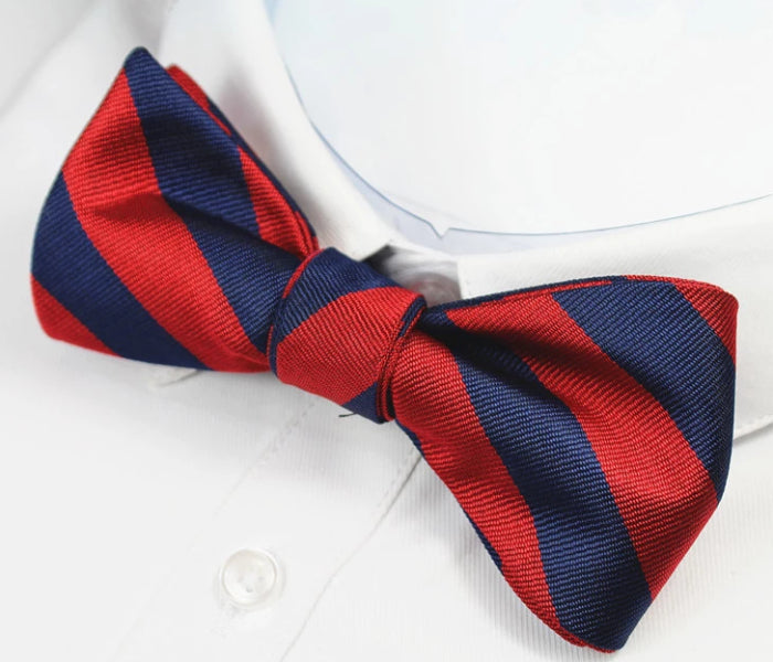 Classy Men Red Blue Striped Silk Self-Tie Bow Tie