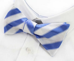 Classy Men Blue White Silk Self-Tie Bow Tie - Classy Men Collection