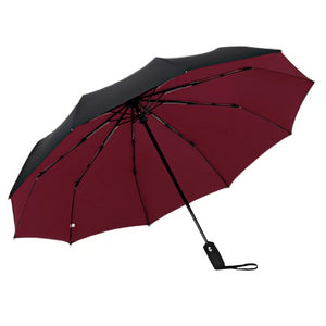 Wine red & black 2 color umbrella open