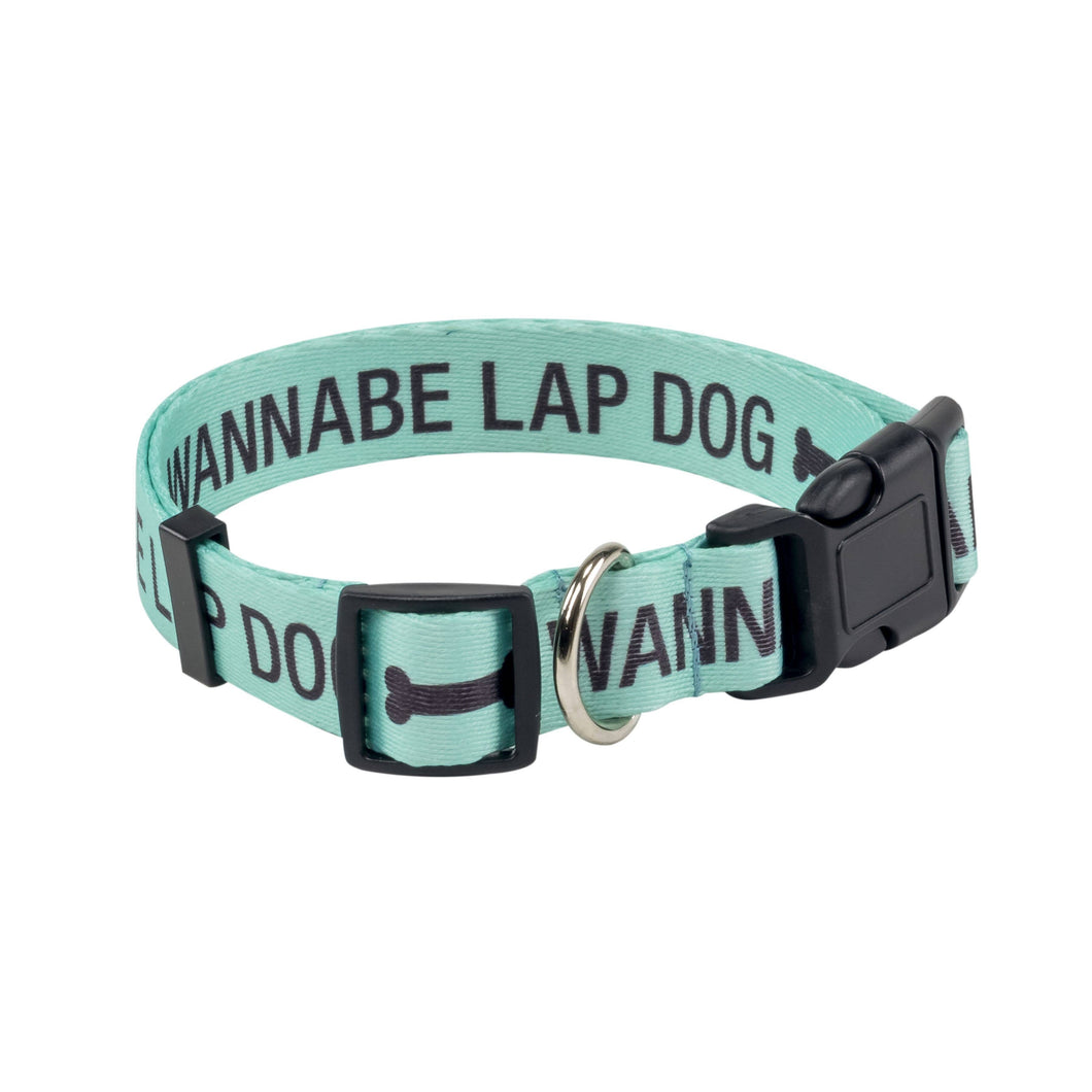 About Face Designs - Wannabe Lap Dog Large/X-Large Dog Collar