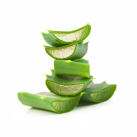 NobleCare™ Aloe Vera 200X Flakes - Noble Roots